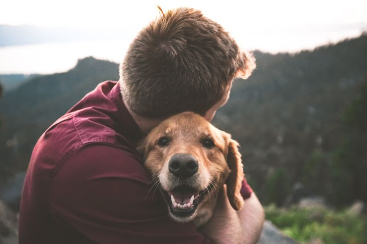 How your pets improve your life