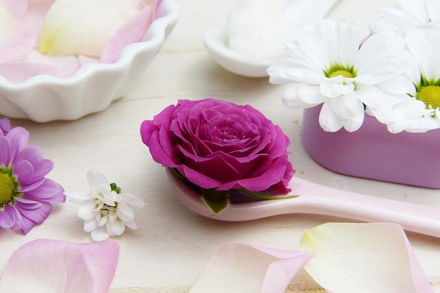 rose-3141794_640