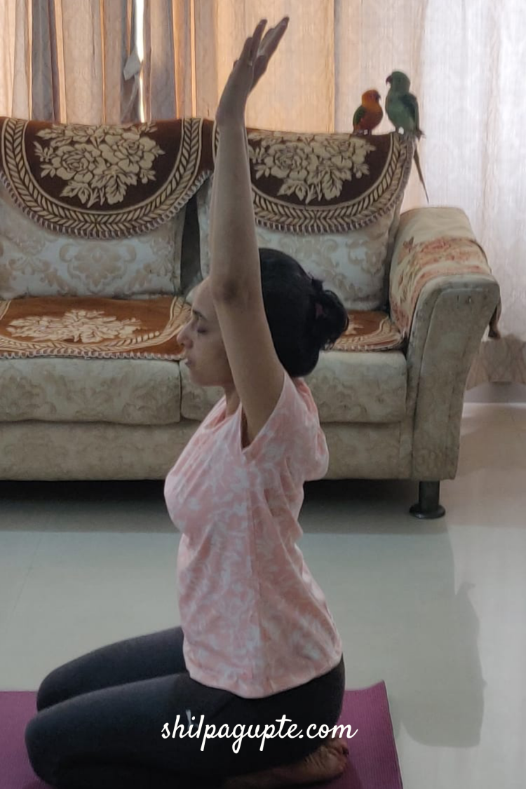 YOGA ASANAS FOR MENSTRUAL